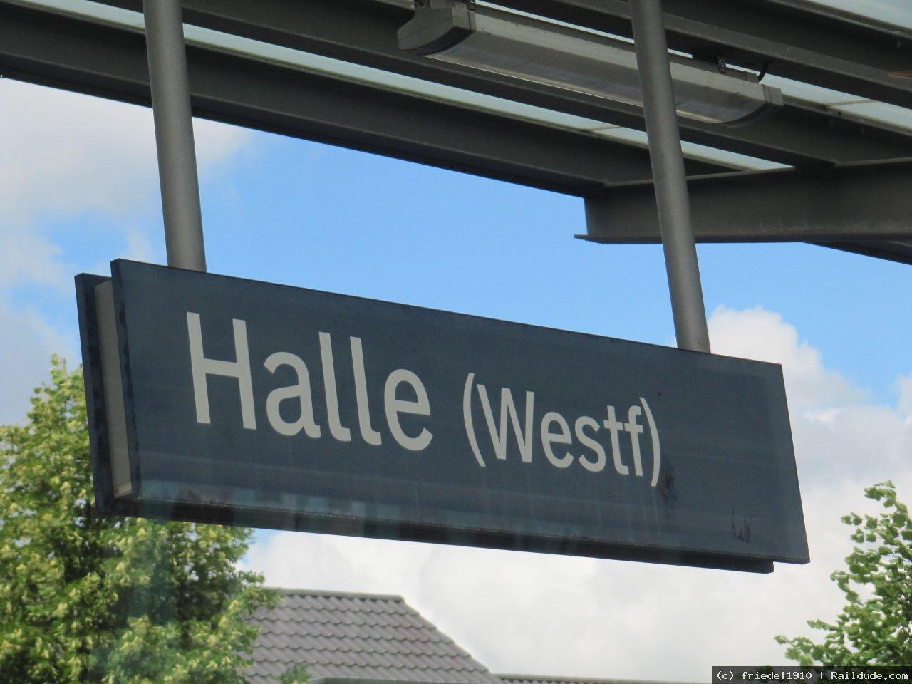 Single halle westfalen